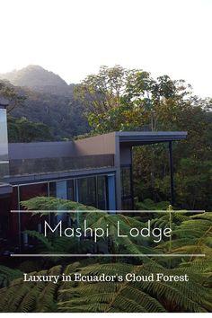 Mashpi Lodge-Luxury in Ecuador's Cloud Forest www.casualtravelist.com