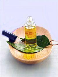 Aceite esencial de Eucalipto (Eucaliptus oil)