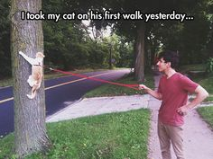 """I took my cat on his first walk yesterday..."""