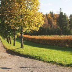 Tuorlan historiallinen alue sijaitsee Turun naapurikaupungissa Kaarinassa, aivan Kuninkaantien varrella.  Ulkoilua rakastaville Tuorla on täynnä mahdollisuuksia: luonnonsuojelualueella sijaitsevat luontopolut suorastaan kutsuvat vaeltamaan. Varanasi, Country Roads