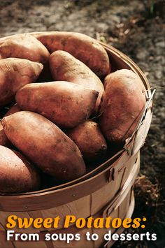 Sweet Potatoes: From soups to desserts.