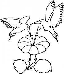 resultado de imagen de figuras para dibujar more information more information digital images and coloring pages of hummingbirds
