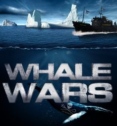 Whale Wars -- Whale Wars: It's not about whales. It's about 42 crazy die-hards with a mission. Follow the Sea Shepherd Conservation Society's ongoing struggle to end Japanese whaling on our website, featuring deleted scenes, crew profiles, behind-the-scenes interviews, articles about whaling and much, much more!