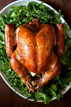 Beer Brined Turkey - campers love it! Plus how to get a super juicy bird with a crispy skin. Beer Recipes, Turkey Recipes, Chicken Recipes, Dinner Recipes, Cooking Recipes, Turkey Brine, Smoked Turkey, Roasted Turkey, Roasted Chicken