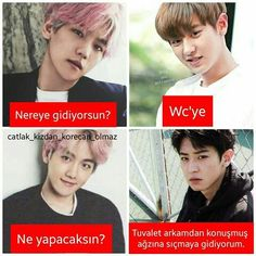 cringe of kpop Bts Vs Exo, Really Funny, Funny Cute, Funny Share, Stupid Cat, Funny Times, Exo Memes, Girly Pictures, Chanbaek