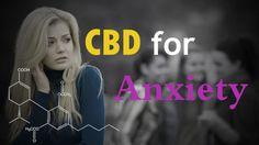 Cannabidiol Cbd Oil for Anxiety http://thehempoilbenefits.com/cannabidiol-cbd-oil-for-anxiety  http://hanfsamenkaufenlegal.com