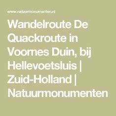 Wandelroute De Quackroute in Voornes Duin, bij Hellevoetsluis | Zuid-Holland | Natuurmonumenten