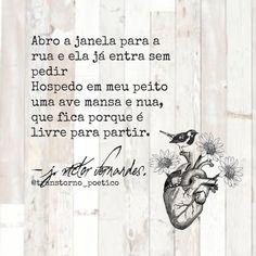 Transtorno Poético, J.Victor Fernandes.
