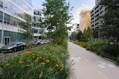 AAUPC_Patrick_Chavannes-Boulogne_Cours_Seguin-(4) « Landscape Architecture Works | Landezine