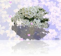 Free animation for digital frame. Floral Wreath, Animation, Wreaths, Digital, Videos, Frame, Decor, Decorating, Flower Crowns