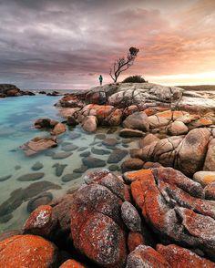Top 10 Most Instagram Worthy Sights in Tasmania - Renee Roaming