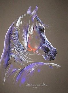 MAGIC-HORSE-edition-Arabian-stallion-12-6-x17-7-ORIGINAL-PASTEL-PAINTING