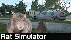 (14) 02 - YouTube Rats, Youtube, Animals, Animales, Animaux, Animal, Animais, Youtubers, Youtube Movies
