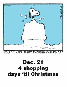 Dec. 21 - This is a classic countdown panel from 2009