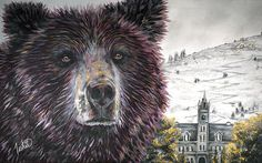 Contemporary University of Montana Missoula Grizzly Art Painting   Contemporary Western Wildlife Art by Animal Artist Teshia  Original Paintings & Art Prints www.TeshiaArt.com