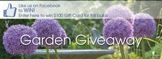 Check out this Garden Giveaway from Longfield Gardens!