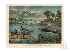 California and Oregon Stage Company attributed to Aaron Stein from the Honeyman Collection of Early Californian and Western Pictorial Mate. Dinosaur Posters, Beautiful Places To Live, Custom Posters, Find Art, Framed Artwork, Illustrators, Oregon, Giclee Print