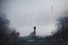 https://flic.kr/p/zLvYNh   November's Fog   self portrait. 2015/11/04  instagram.com/teapalm tumblr.com/teapalm facebook.com/tashamariephotography