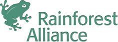 Acerca de nosotros | Rainforest Alliance