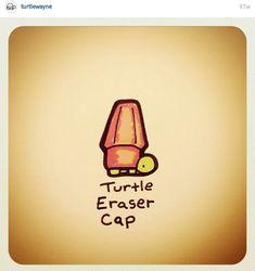 Turtle eraser by turtle Wayne