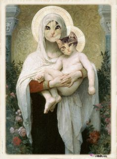 Madonna and kitten