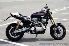 Best Of: XR1200 or XR1200X Pictures - Page 2