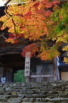京都  神護寺。楼門。