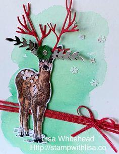 Stampin Up, Moose Art, Australia, Adventure, Paper, Nature, Cards, Animals, Beauty
