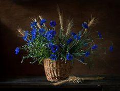 Цветочные букеты и фотонатюрморты Алёны Мустафиной