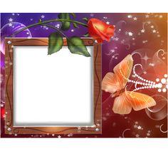 Rose e la farfalla