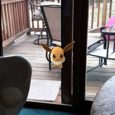 #evee just showed up. #Pokemon #pokemongo #snorlax is outside right now. @aleksandr.zelenenkiy #eulenation #highfive