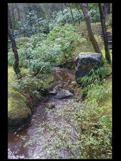 Portland Japanese Garden - Natural garden