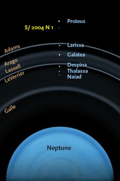 Neptune's Newest Moon Astronomers have spotted a tiny object circling Neptune. This find, designated S/2004 N 1, brings the planet's moon count to 14. This illustration shows the approximate location of S/2004 N 1, a tiny new moon of Neptune discovered in Hubble Space Telescope images, with respect to Neptune's rings and other nearby moons. Don Davis / The New Solar System