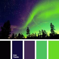 black, bright green, bright light green, canonical aubergine, color match, color solution for home, dark-violet, neon green, neon shades, night sky color, shades of light-green, Violet Color Palettes.