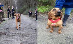 Dog finishes 7th in Alabama half-marathon