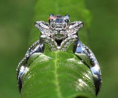 LOVE IN BLOOM - Solid Platinum - Unique Flower Lotus Rose Diamond Engagement or Right Hand Ring. $5,250.00, via Etsy.