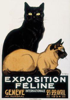 Year: 1934 | Exposition Féline International Genève | Elzingre Edouard