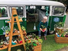 Volkswagen, Vw T1, Flower Shop Decor, Flora Farms, Flower Truck, Hygge Life, Vendor Booth, Catus, Market Stalls