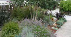 Leigh Designs_garden