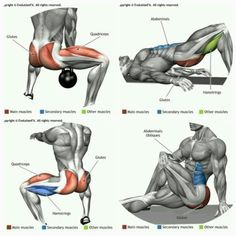 Upper-back weight exercises Best Chest Workout, Ab Workout Men, Best Ab Workout, Gym Workouts, At Home Workouts, Back Weight Exercises, Weight Training Workouts, Bodybuilding, Muscle Building Workouts