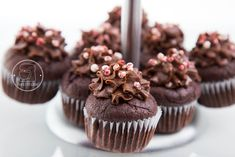 Mini Cupcakes, Macarons, Brownies, Muffins, Recipes, Food, Cake Brownies, Muffin, Recipies