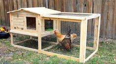 DIY:  Small Backyard Chicken Coop