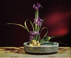 Iris Ikebana