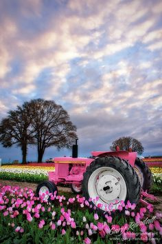 John Deere in Pink girly pink nature flowers field farm tractor john deere Pretty In Pink, Pink Love, Pink Tractor, Rose Fushia, Pink Flowers, Pink Tulips, Teenage Girl Gifts Christmas, Christmas Gifts, Teenage Gifts
