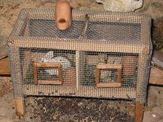 Foro de Belenismo - Miniaturas, detalles y complementos -> Conejeras Vitrine Miniature, Nativity Crafts, Mini Things, Small Art, Magical Creatures, Fairy Houses, Miniture Things, Small World, Dollhouse Miniatures
