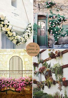 #MeuCanto y las flores, en fachadas, en bandejas, en botes de cristal .... pero siempre flores