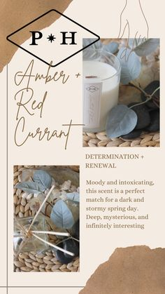 Amber + Red Currant: Moody and intoxicating, this scent is a perfect match for a dark and stormy spring day. Deep, mysterious, and infinitely interesting, . #buylesschoosewell #consciousliving #howyouhome #purchasewithpurpose #liveauthentically #consciousbusiness #spiritualbusiness #habitandhome #holisticliving Aromatherapy Candles, Scented Candles, Home Fragrances, Spring Day, Perfect Match, Crisp, Cleaning, Lifestyle, Men