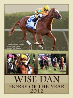 Wise Dan - 2012 Horse of the Year