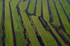 Yann Arthus-Bertrand : Polder Vinkeveen, south of Amsterdam, Netherlands