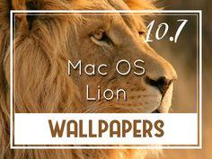 Mac Os, Lion Wallpaper, Desktop Wallpapers, Backgrounds, Desktop Backgrounds, Backdrops, Wallpapers